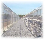 Fixing Immigration Detention Through Immigration Reform