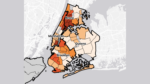 DATA TOOL | Mapping Key Determinants of Immigrants' Health in New York City